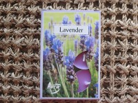 Tea Lights - lavender
