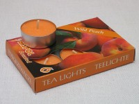 Tea Lights - wild peach